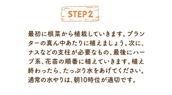 STEP2 最初に根菜から植栽していきます。プランターの真ん中あたりに植えましょう。次に、ナスなどの支柱が必要なもの、最後にハーブ系、花苗の順番に植えていきます。植え終わったら、たっぷり水をあげてください。通常の水やりは、朝10時位が適切です。